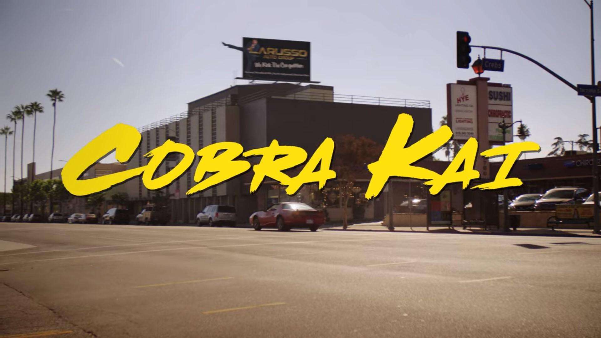 Cobra Kai 01x01