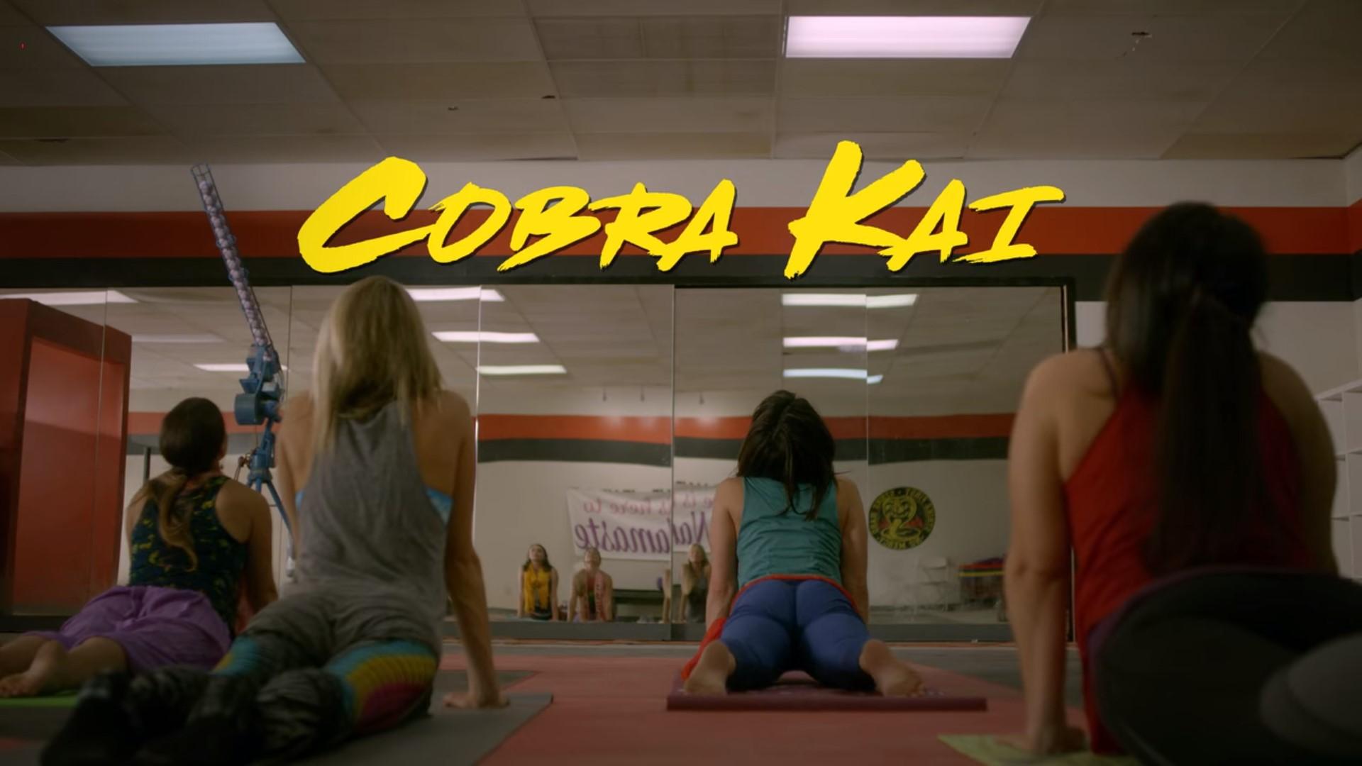 Cobra Kai 01x05