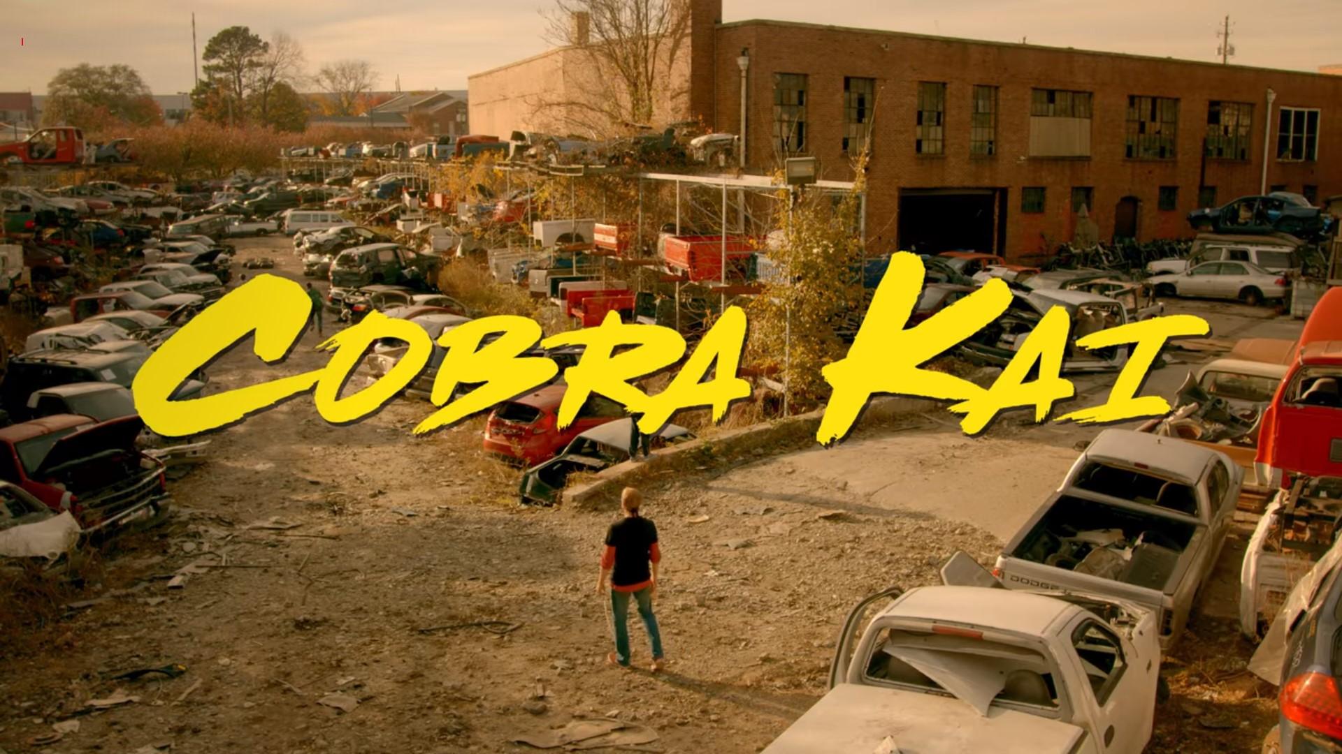 Cobra Kai 01x08